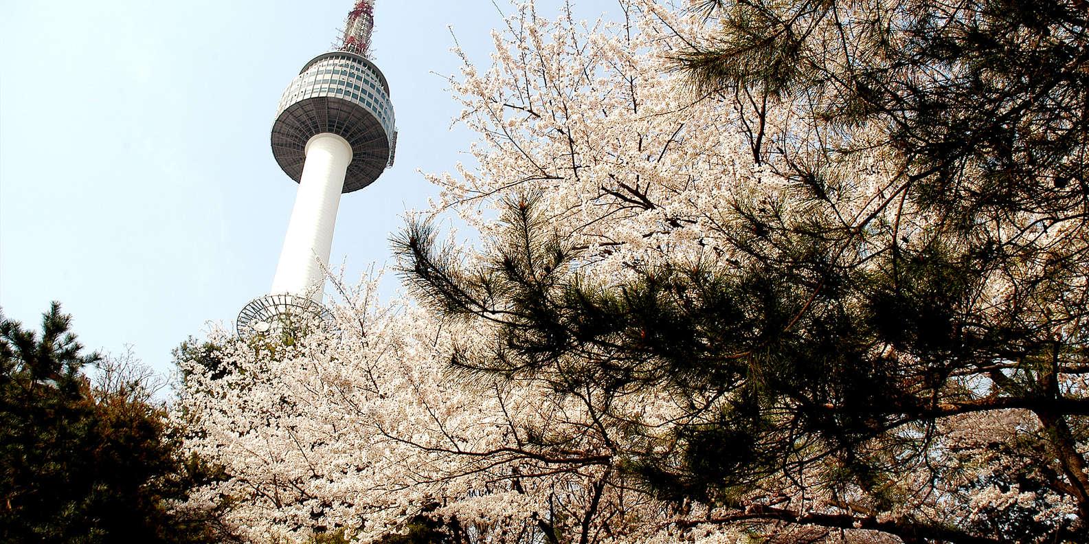 Tháp Nam San tại Hàn Quốc