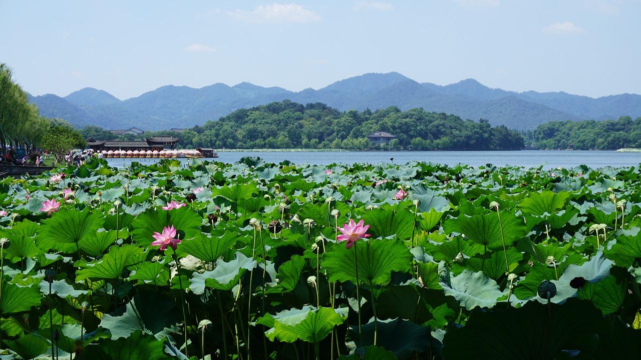 Cảnh đẹp Tây Hồ trong tour du lịch Trung Quốc 5N4Đ