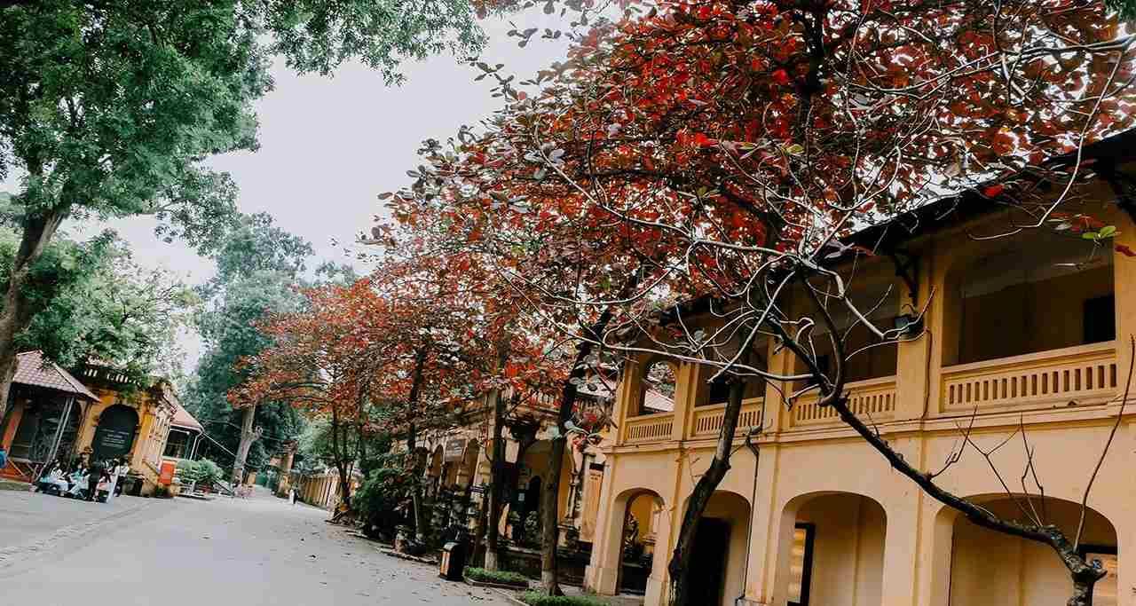 Phố cổ Hà Nội - Tour du lịch Hà Nội - Hạ Long - Sa Pa 5N4D