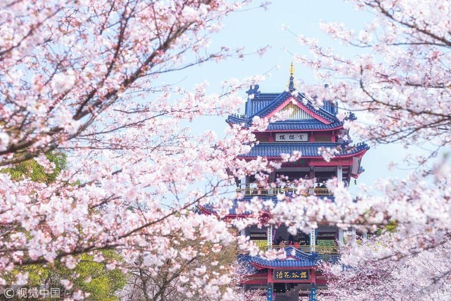 Trung Quốc mùa xuân là thời điểm nhiều du khách mong đợi