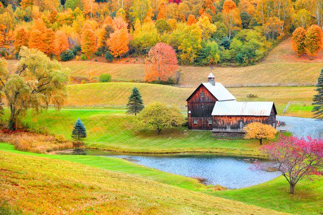 Mùa thu đẹp đến nao lòng ở nước Mỹ xinh đẹp