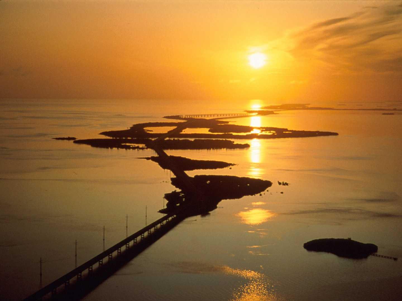 Cây cầu nối dài những vẻ đẹp