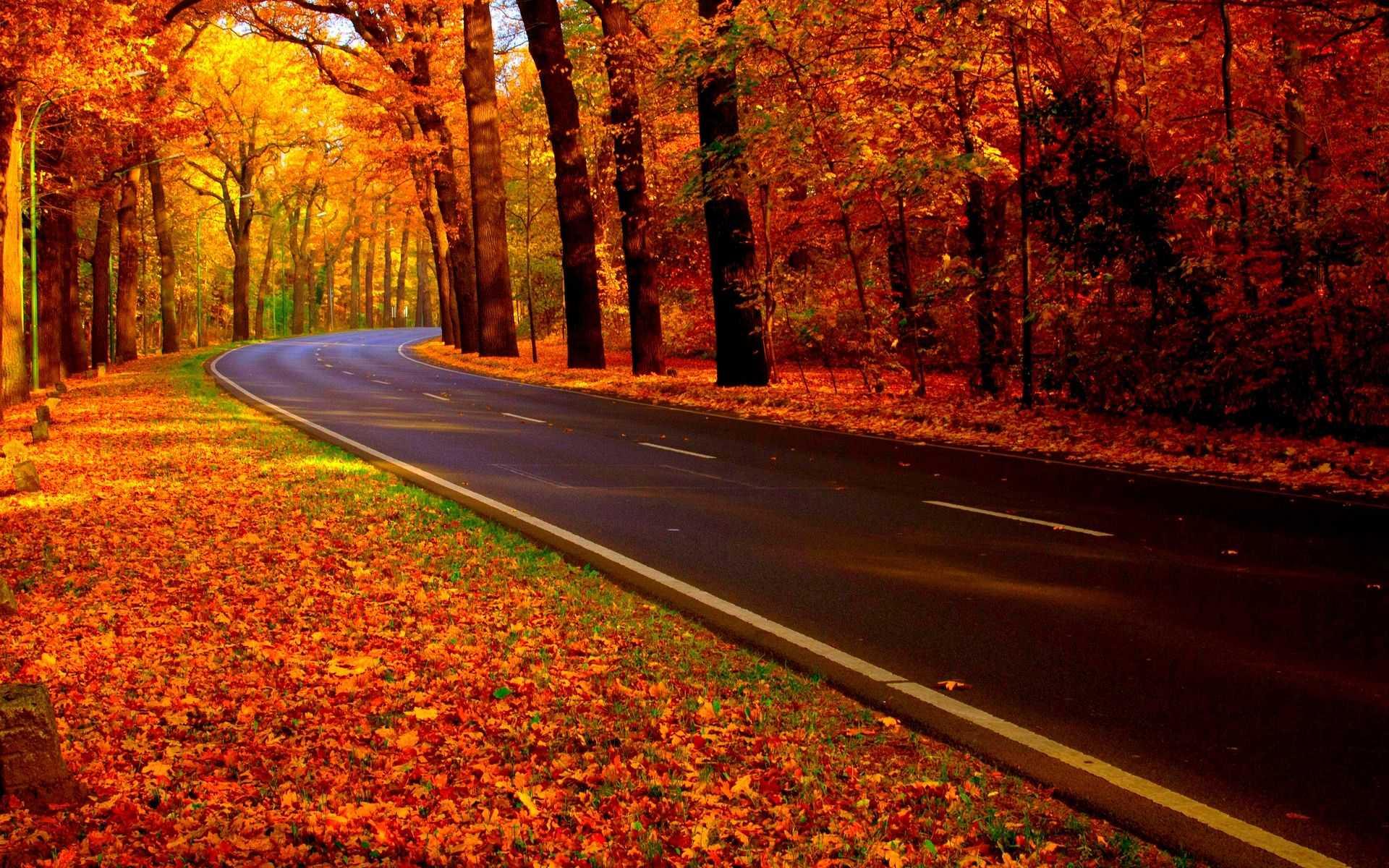 Những cung đường lãng mạn mùa thu
