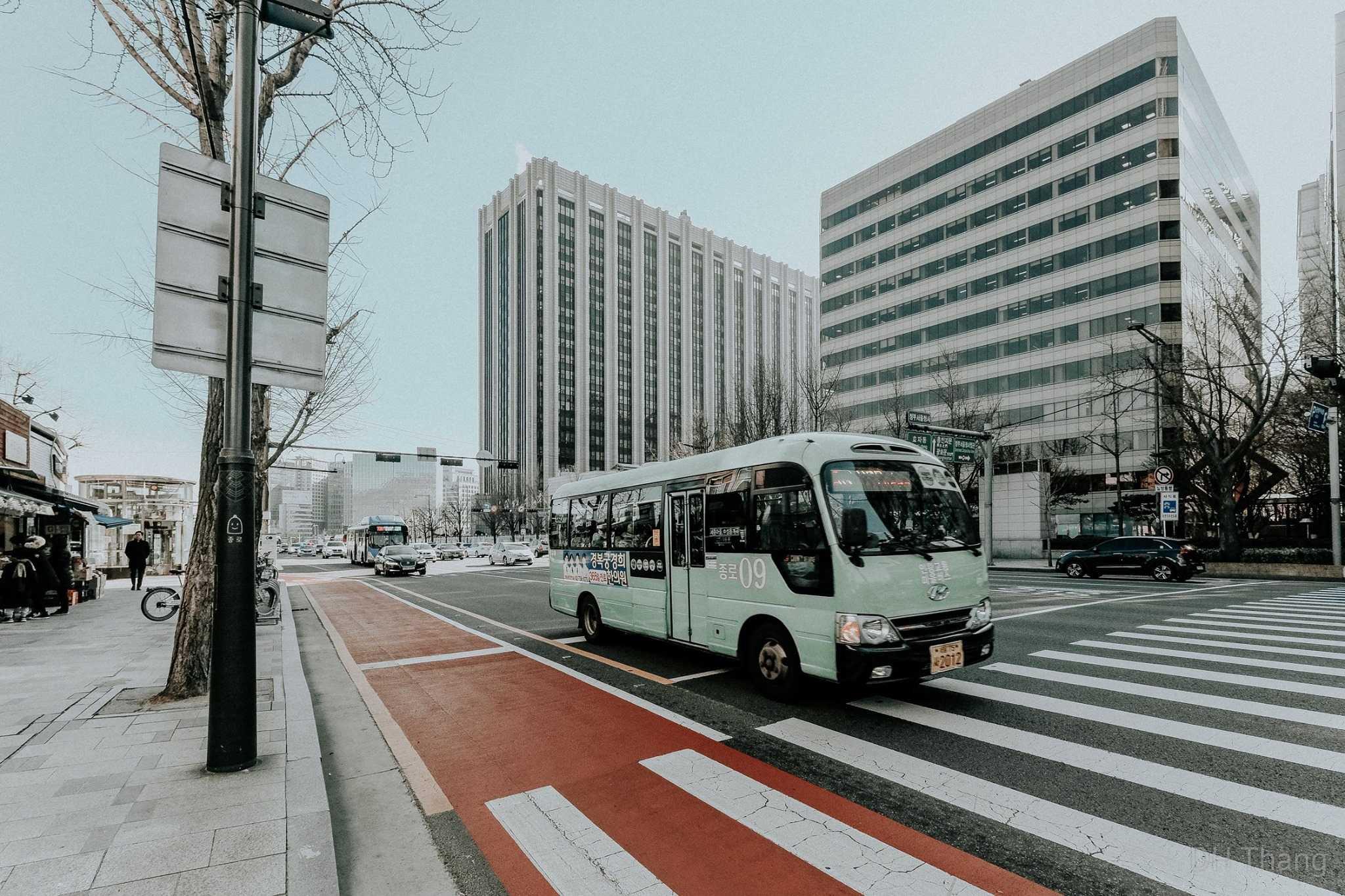 Một con đường ở nước Hàn đơn giản thôi cũng mộng mơ đến vậy review du lịch Hàn Quốc
