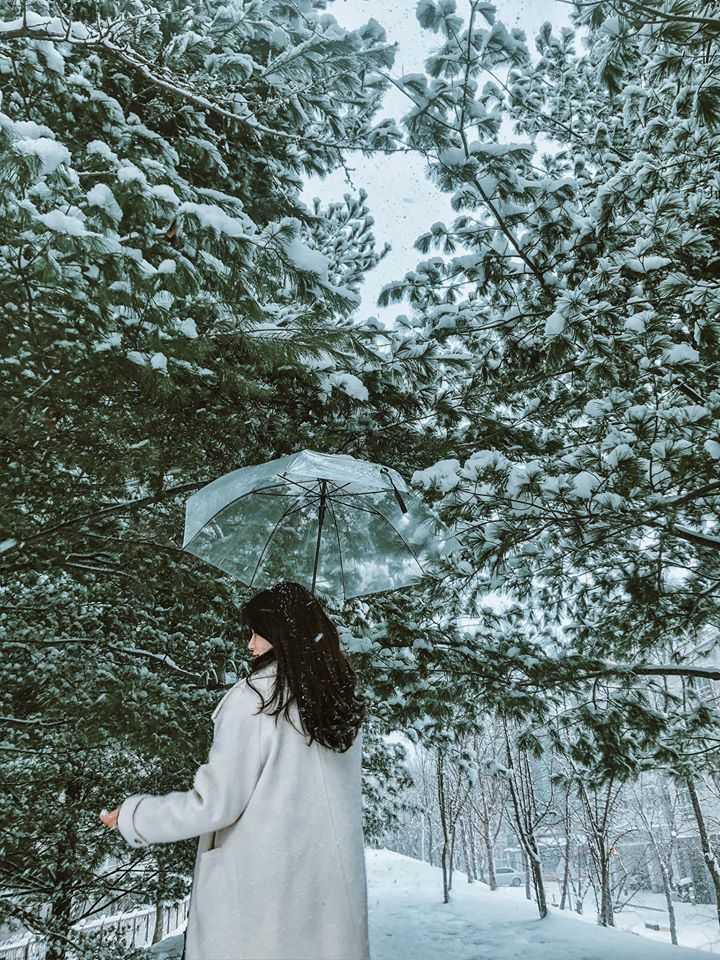 Hàn Quốc xinh đẹp đang chờ các bạn đó nha review du lịch Hàn Quốc