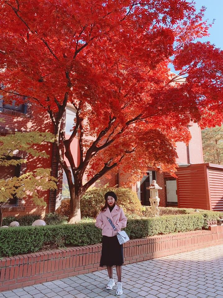 Một góc đường mùa thu. Cr: Vo Ngoc Dieu review du lịch Hàn Quốc