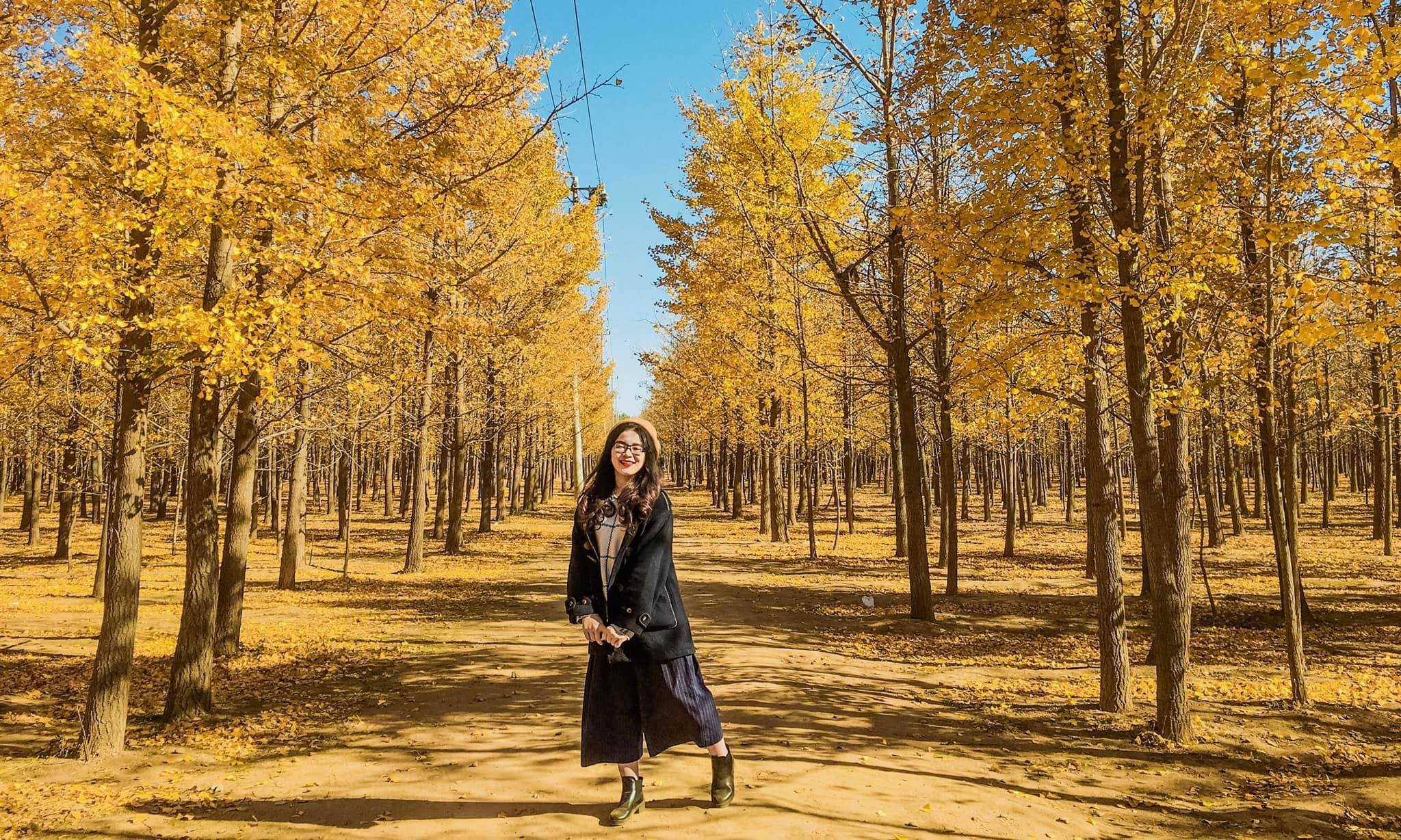 Yêu kiều giữa mùa thu. Cr: Phạm Thảo