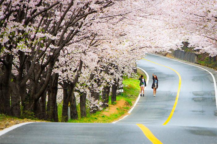 Hàn Quốc đẹp và rất đáng để đi